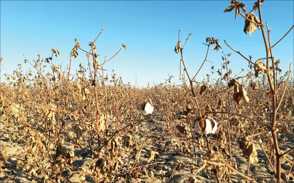 نفروختن سهمیه مازاد آب، چالش جدید کشاورزان خوشاب